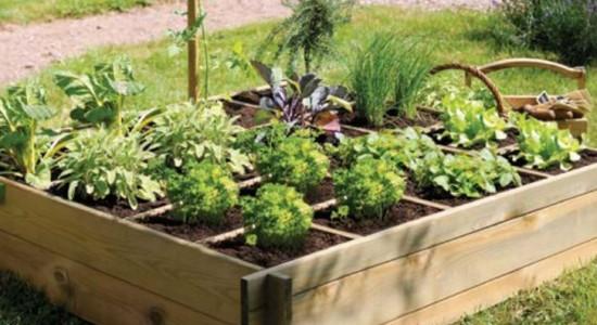 potager-bio-terrasse