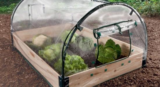Avoir une serre dans son jardin - Quand mettre du fumier dans son jardin ...