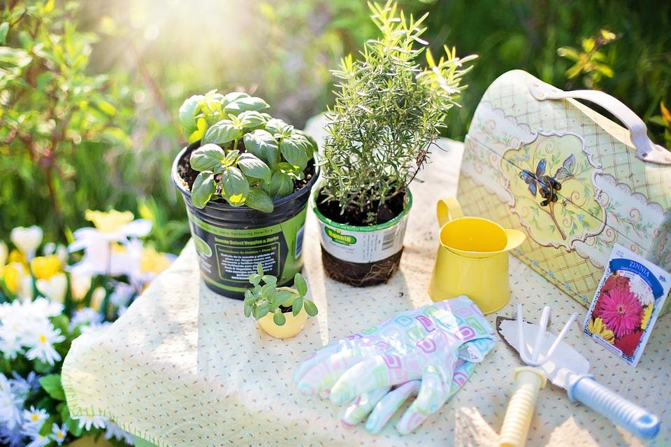 Outils de jardinage : bêche, griffe, gants, pots de fleurs